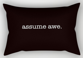 assume awe rect. pillow copy