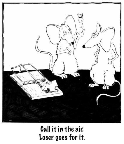 MiceCheese Bigcopy copy 2