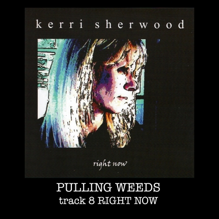 pullingweeds song box copy