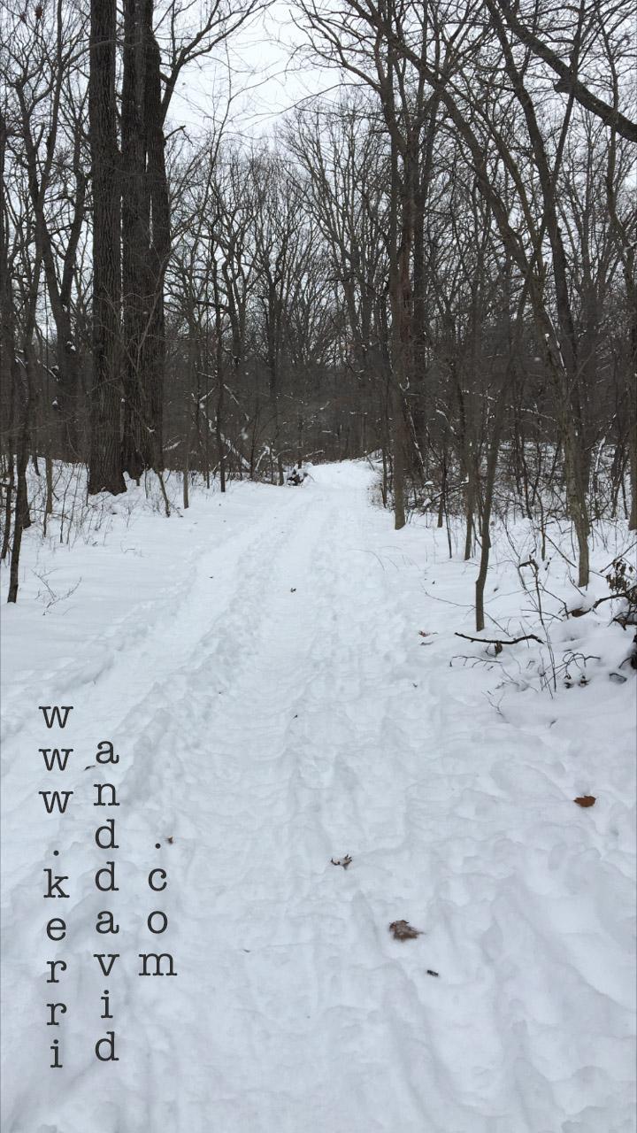 snowpath in bristolwoods website box copy