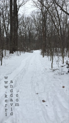 snowpath in bristolwoods website box copy