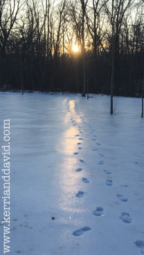 footprints in sunlit snow website box copy