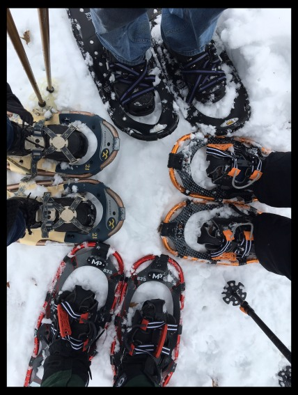 snowshoes with frame copy
