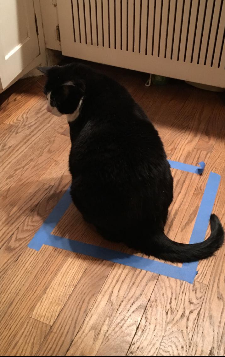 bcat tape box copy