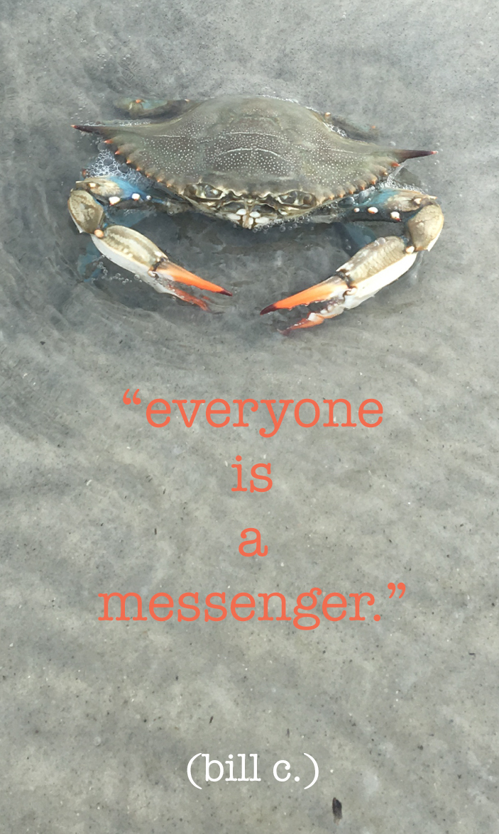 *everyone is a messenger copy