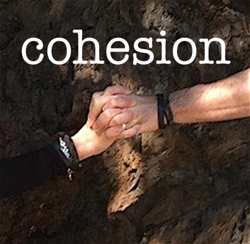 cohesion copy