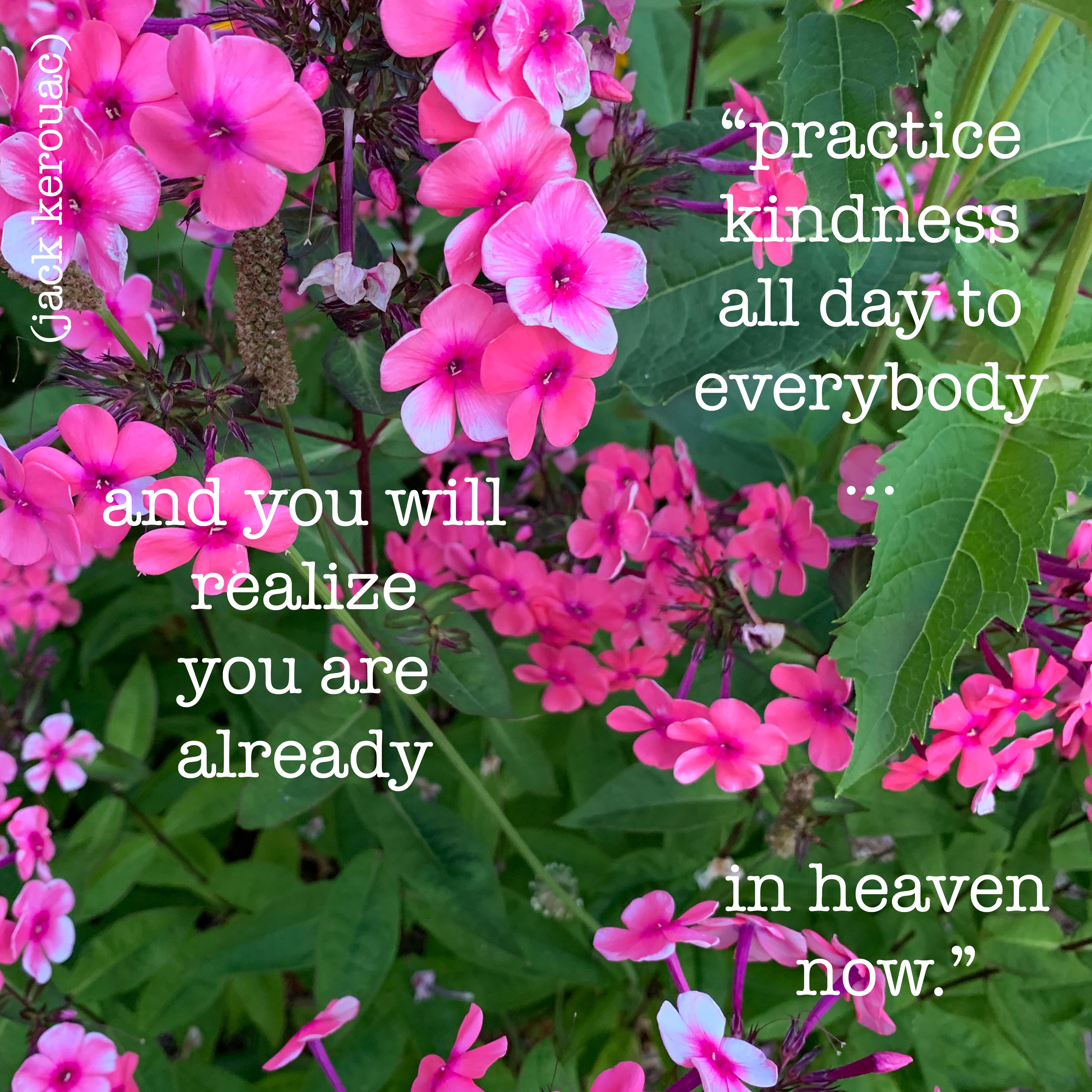 kindness kerouac copy