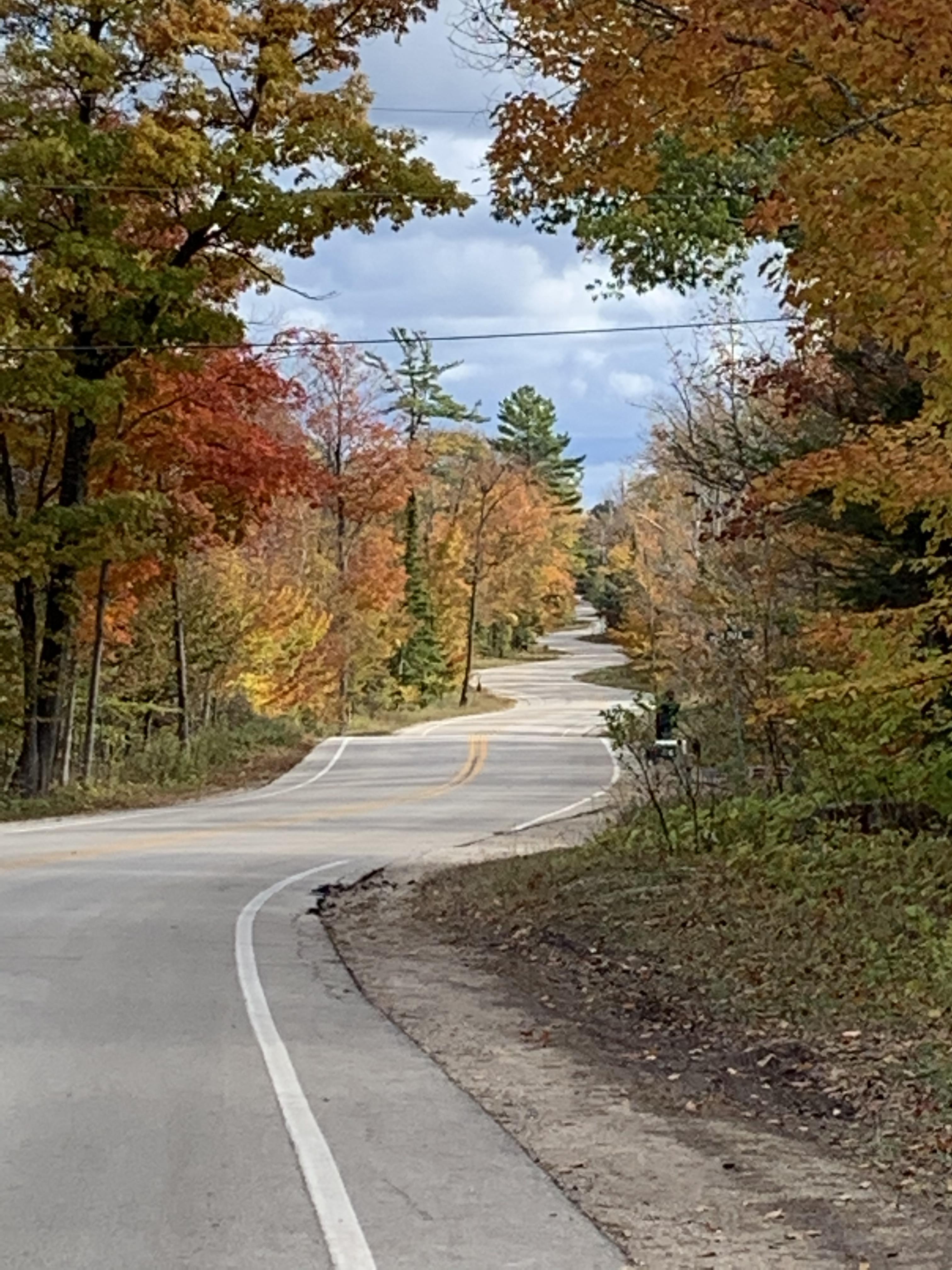 curvy road copy