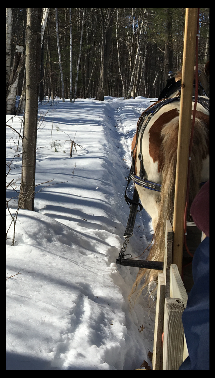 sleigh ride copy