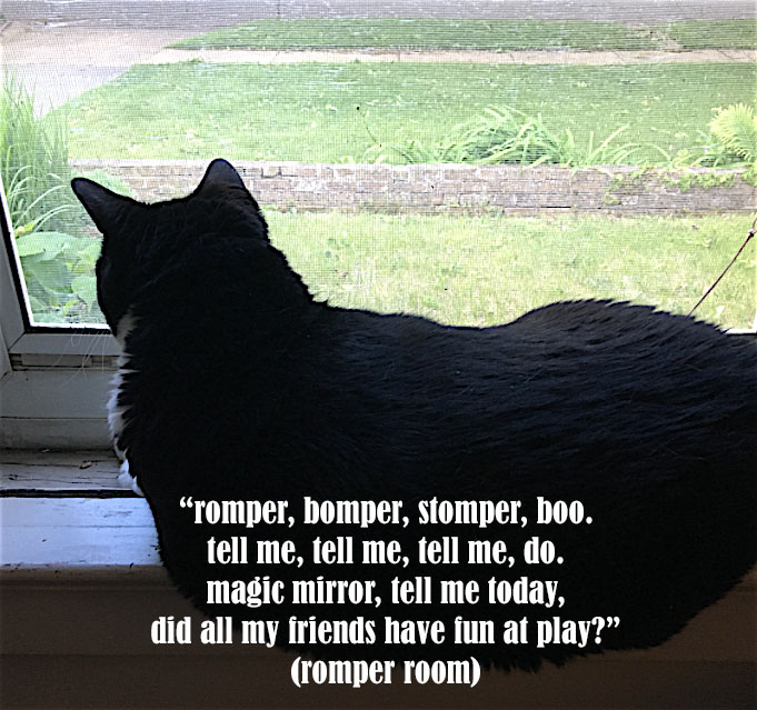 bcat in the window romper room copy