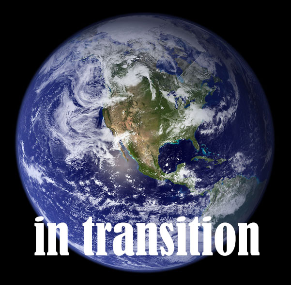 in transition copy
